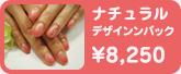 ナチュラルデザインパック ¥8,250